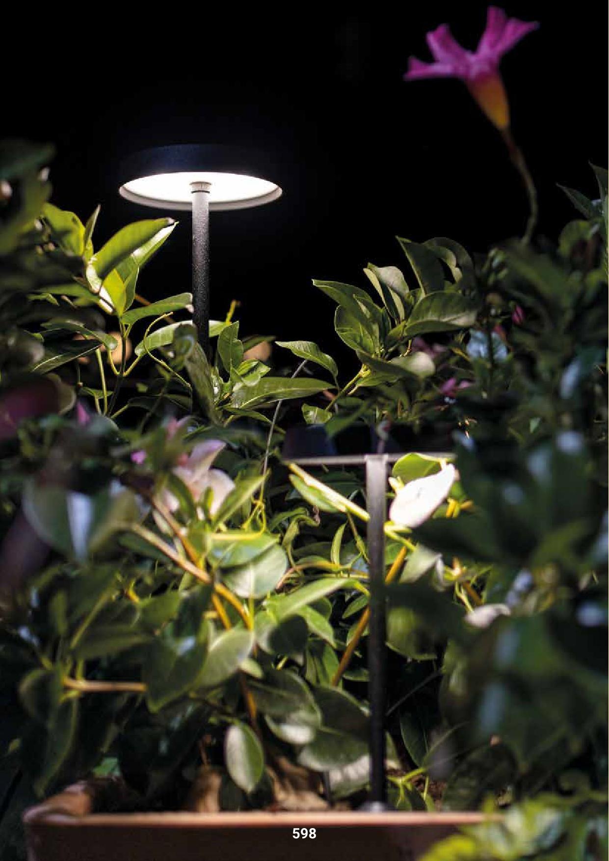 Linea Light – Pistillo